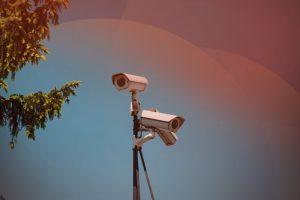 talent-management-consultancy-surveillance software